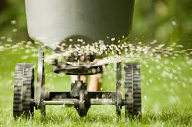 weed control lawn care