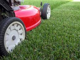 Green Point Lawn Care